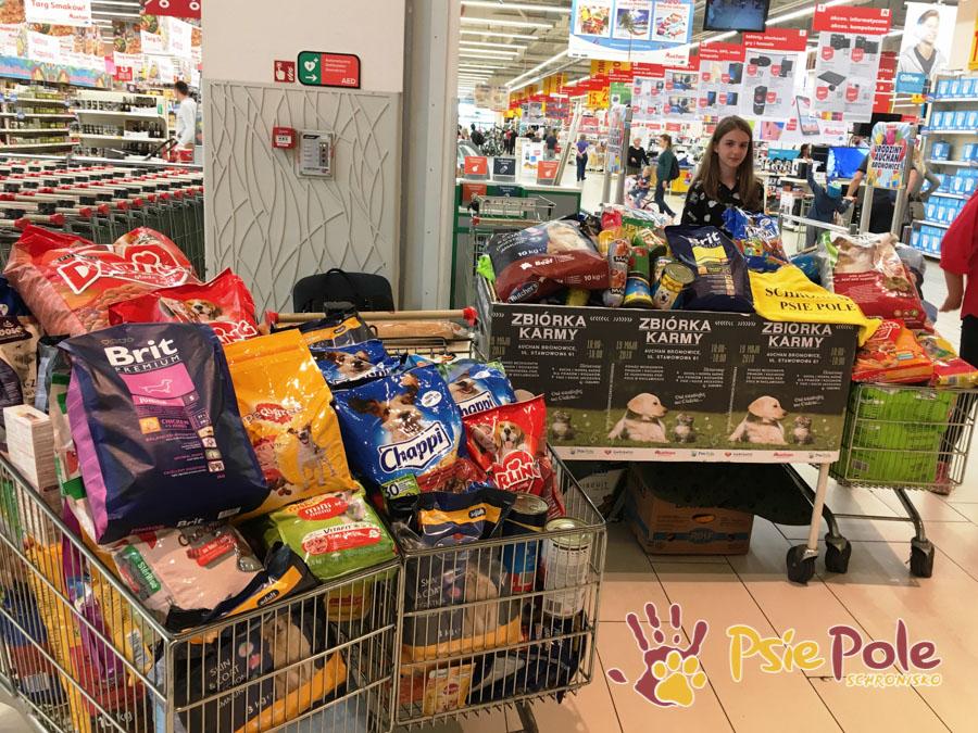 Zbiórka karmy piesków i kotków w schronisku w Auchan Bronowice