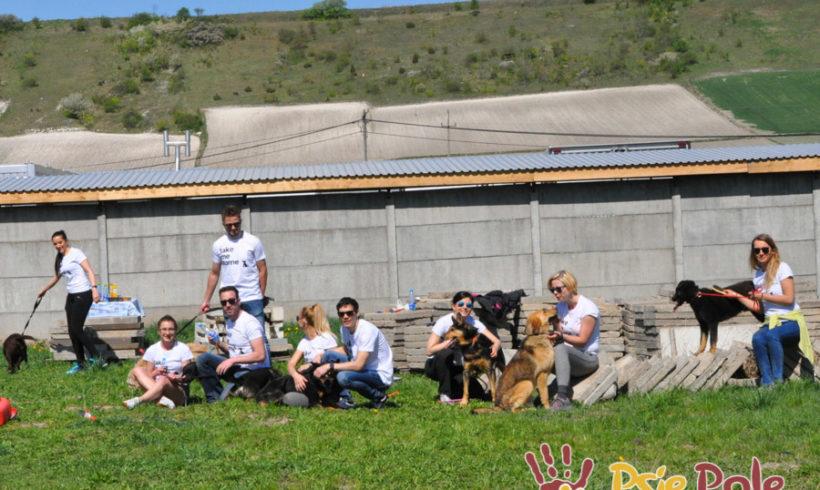 Majowe odwiedziny wolontariuszy