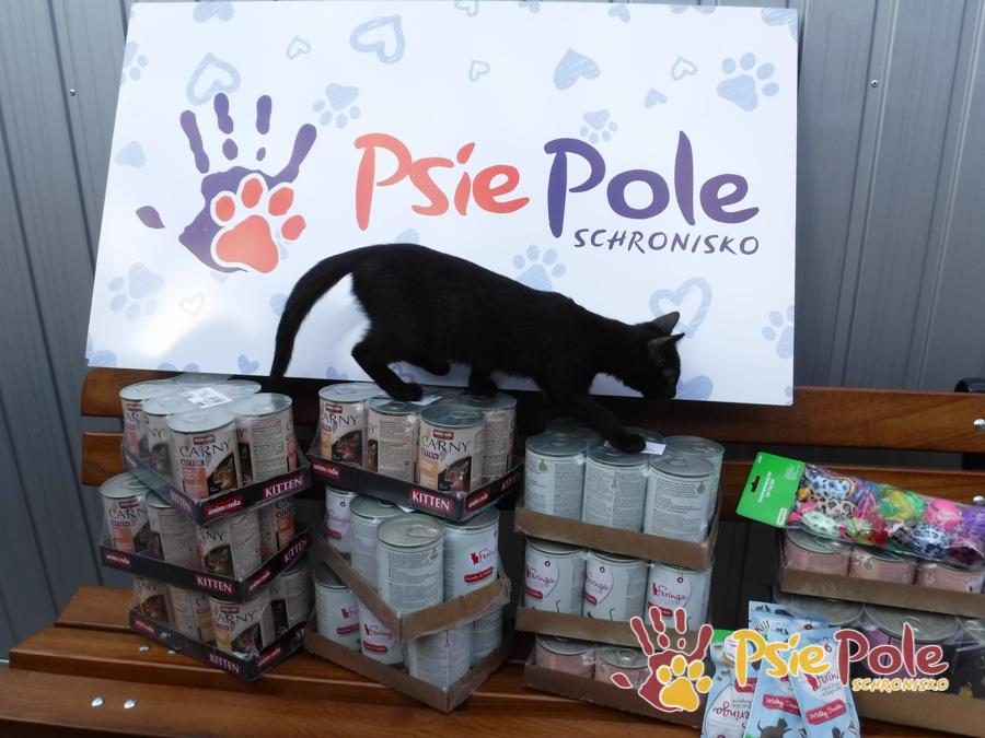 Paczka dla kotków